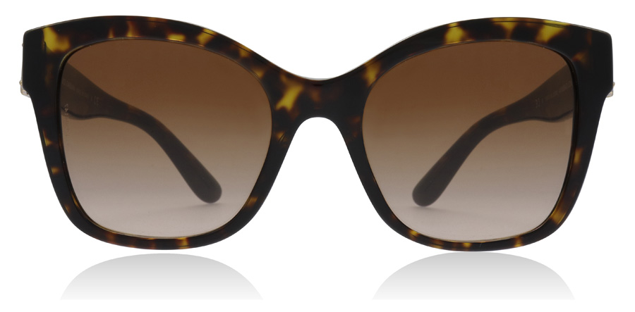 Dolce and Gabbana DG4309 Havana 502/13 53mm